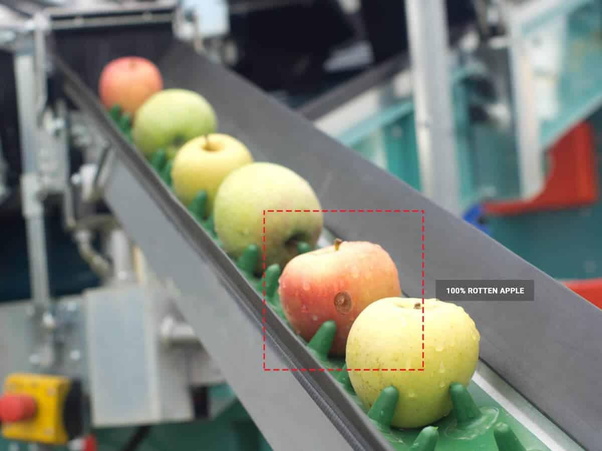 Rotten apple detected