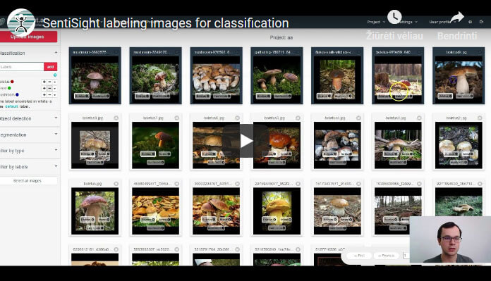Labeling images for classification