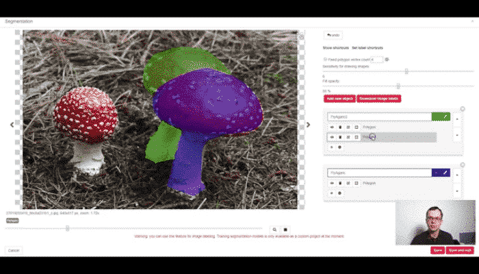 Labeling images for segmentation tutorial