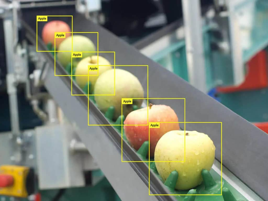 Apples in bounding boxes - for defect recogntion