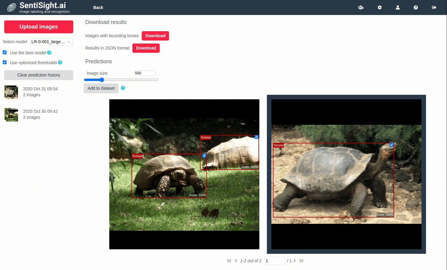 SentiSight AI-assisted labeling example 2