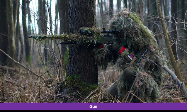 Gun detection