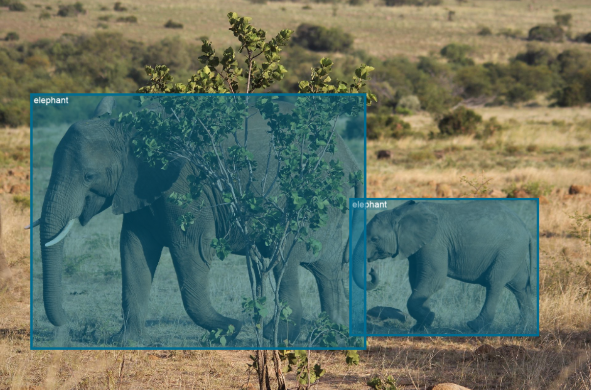The Evolution of Object Detection