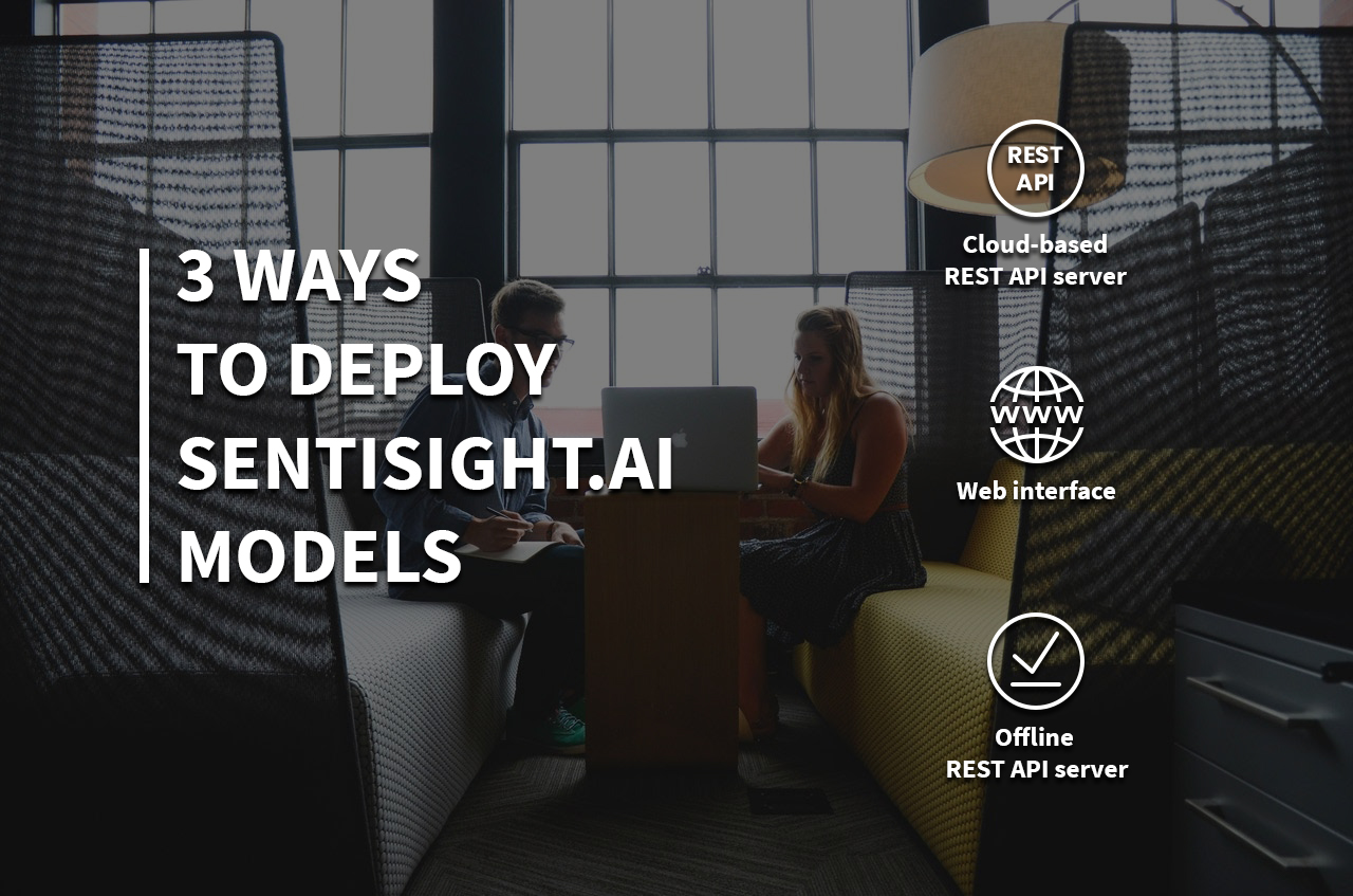 3 ways to deploy SentiSight.ai models