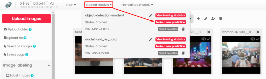 Web interface trained models