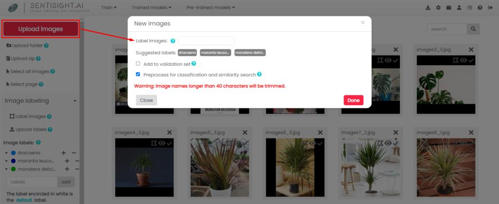 Image annotation project management using SentiSight.ai - SentiSight.ai